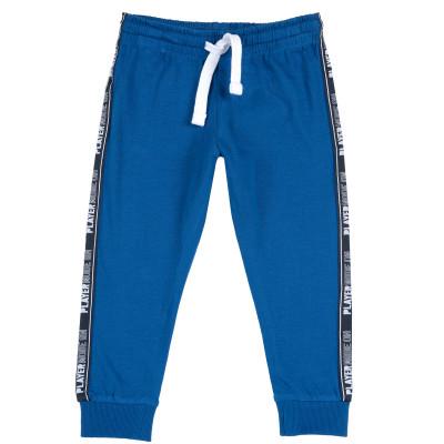 Брюки спортивные Player mood blue