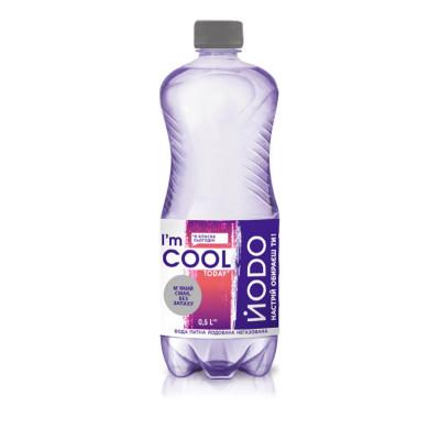 Вода Йодо негазированная 0,5л 1527135 ТМ: Йодо