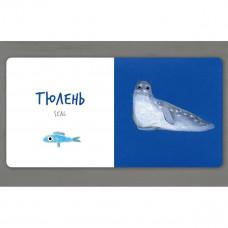 Таберко К. Морские животные Артбукс 20 с (укр.) 23586 ТМ: ArtBooks