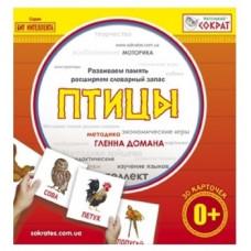 Мини-карточки Домана Маленький Сократ Птицы (русский)